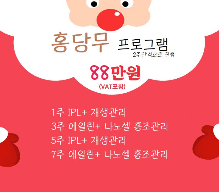 겨울이벤트 홍당무 프로그램.png
